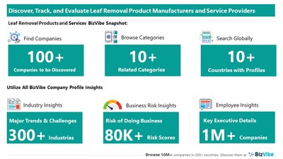 Snapshot of BizVibe's leaf removal company profiles and categories.